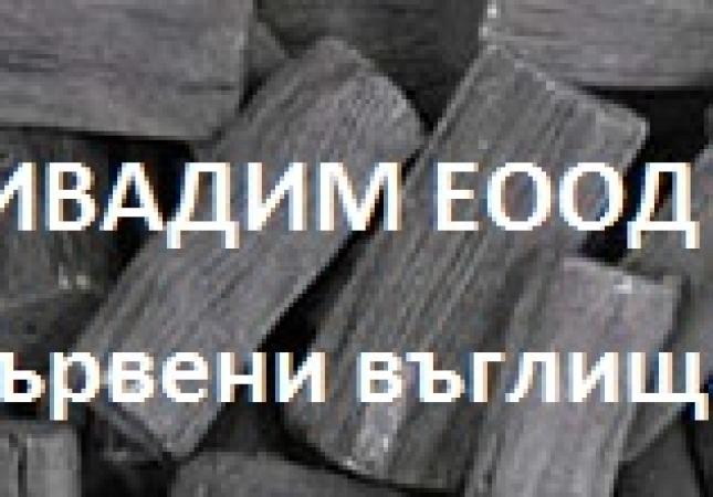 ivadim-logo