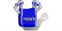 logo-flexicon