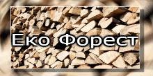 eko-forest-logo