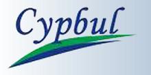 CYPBULK