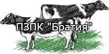 logo-bratia