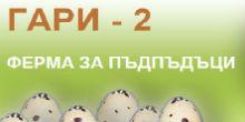logo-gari-2