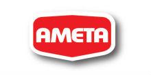 logo-ameta