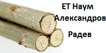 energiewald-pappelsteckling