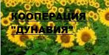 ScreenHunter_42199 Jun. 26 15.39