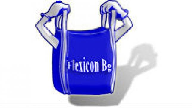 logo-flexicon